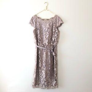 Tadashi Shoji Lace Belted Tan Taupe Applique Dress